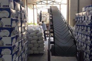 صادرات قند عراق